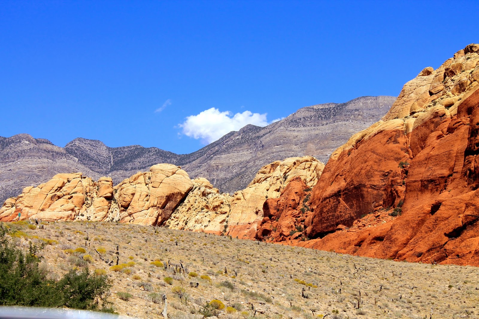 Red Rock Canyon // feathersandstripes.com