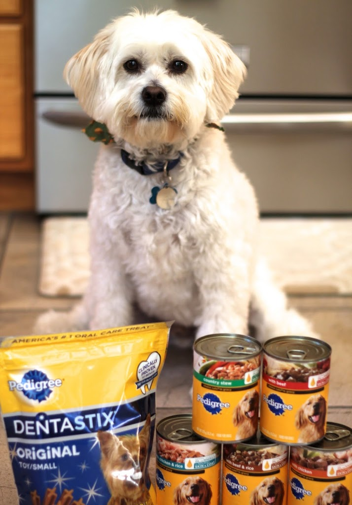 Pedigree food and treats