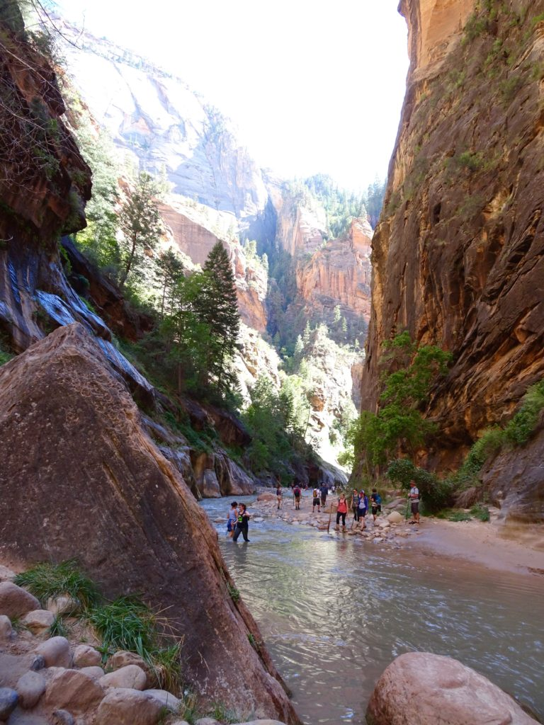 hiking The Narrows in Zion National Park // feathersandstripes.com