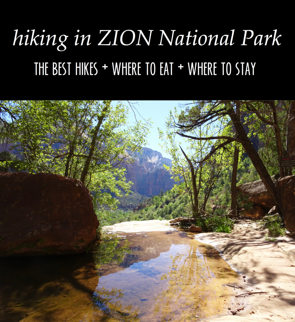 Zion National Park Travel Guide // feathersandstripes.com