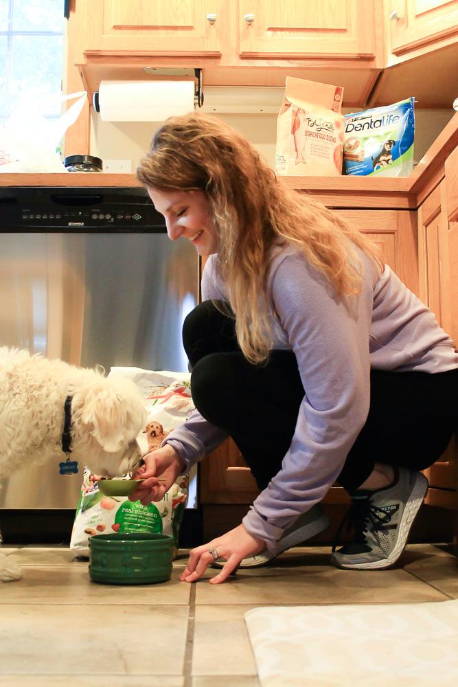 purina-healthy-dog-food-1