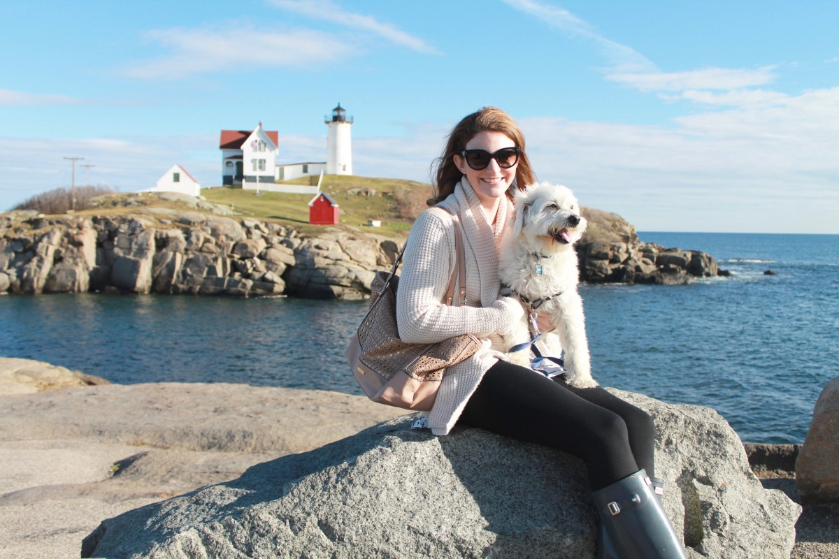 day trip from Boston to Maine - pet-friendly!