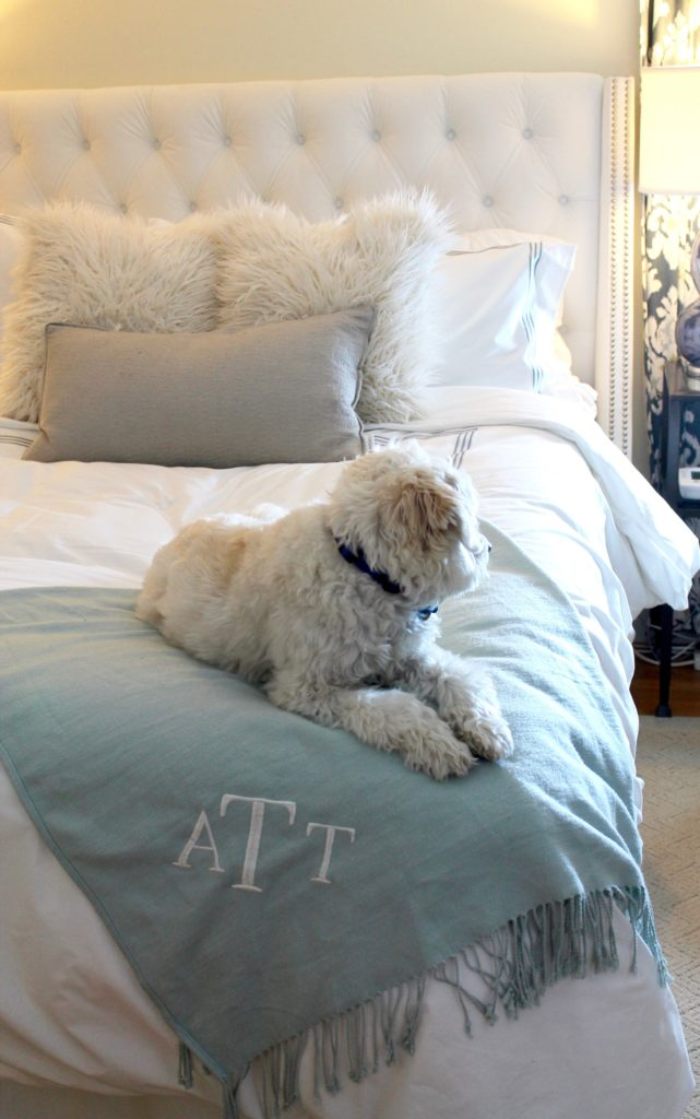 Pottery Barn duvet