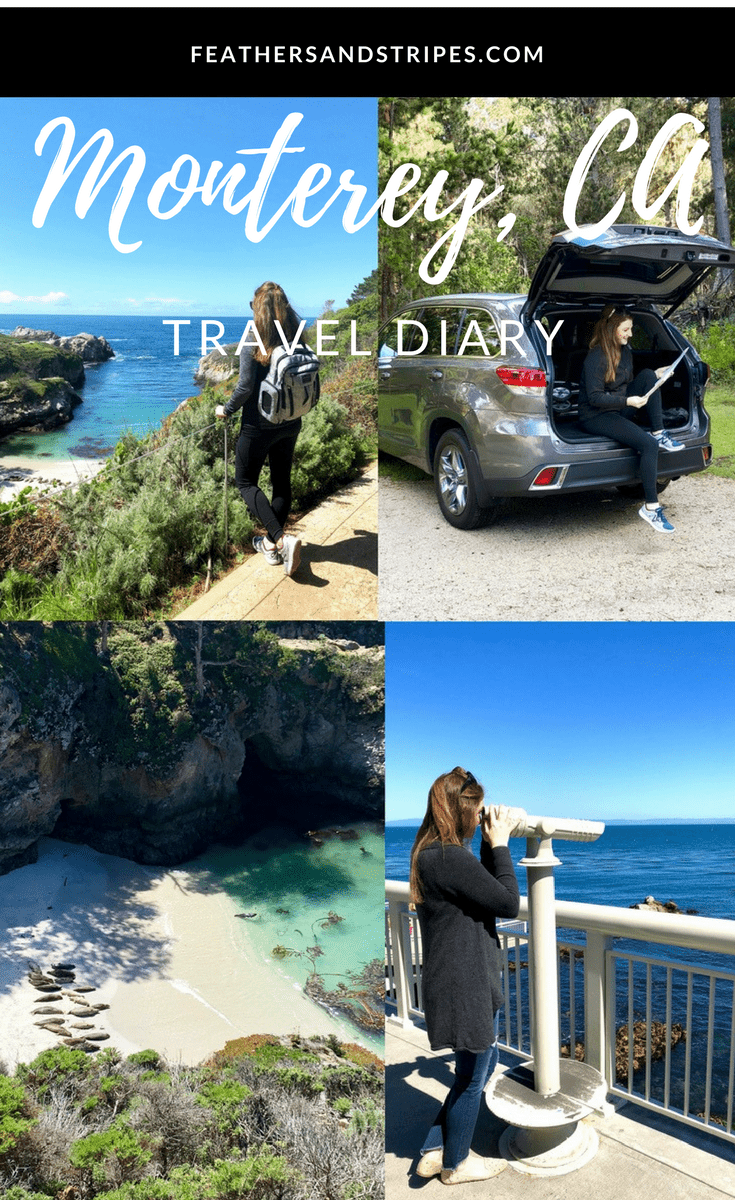 Monterey County travel guide: Where to stay and what to do in Monterey and Carmel