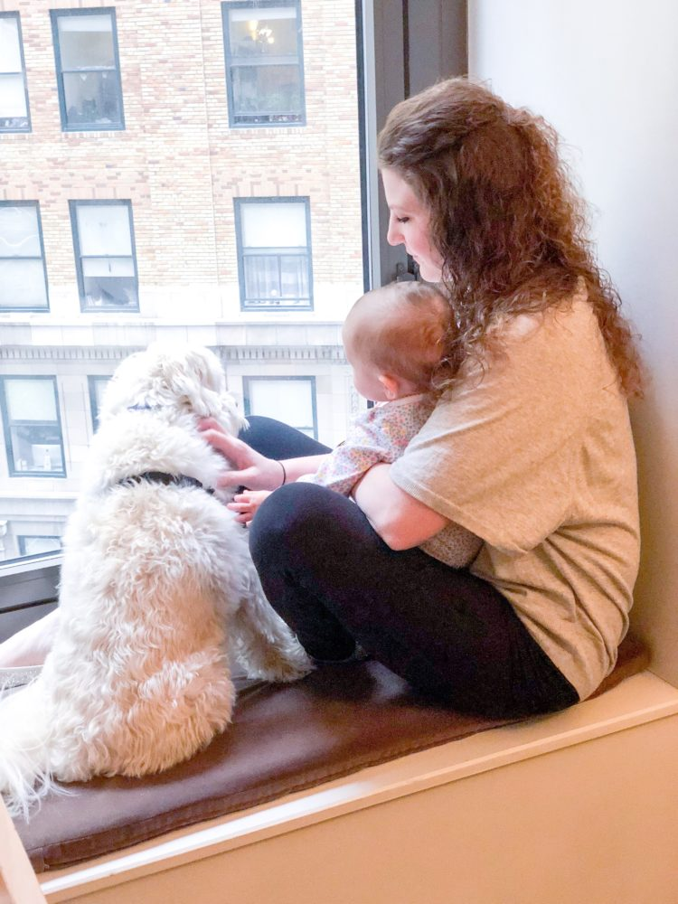 travel to NYC with a baby and a dog! feathersandstripes.com