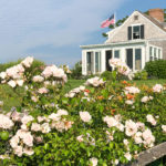 Cape Cod Recap – 8 Days in Chatham