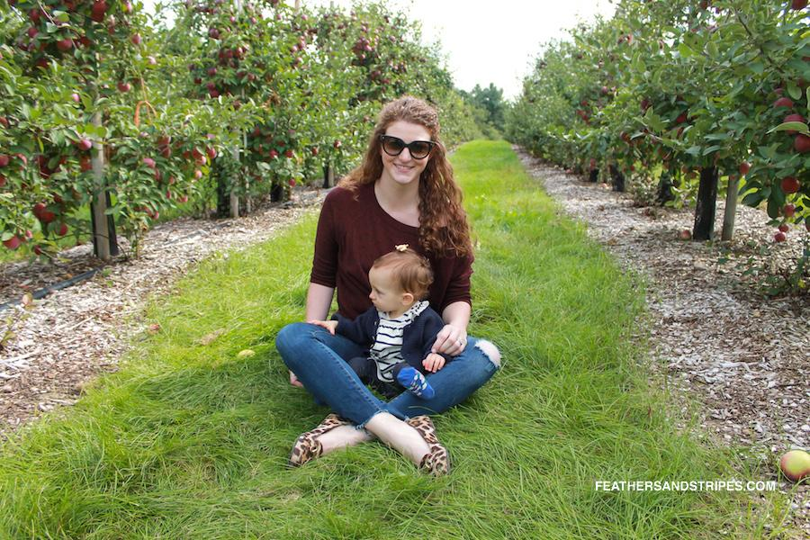 Where to go apple picking in Massachusetts, Parlee Farms apple picking September