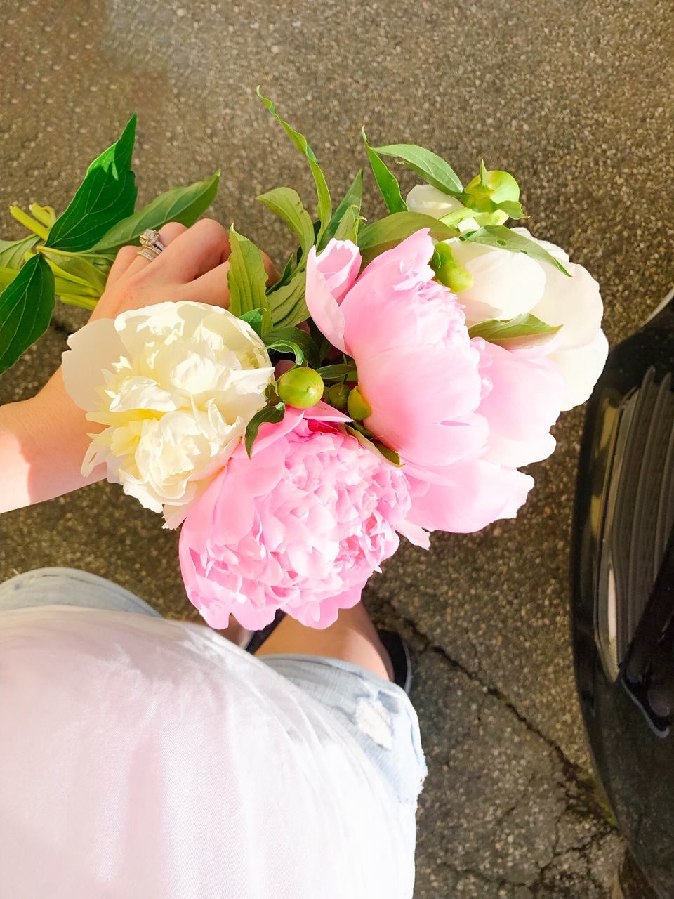 6 Things I Loved This Week (peony season!)
