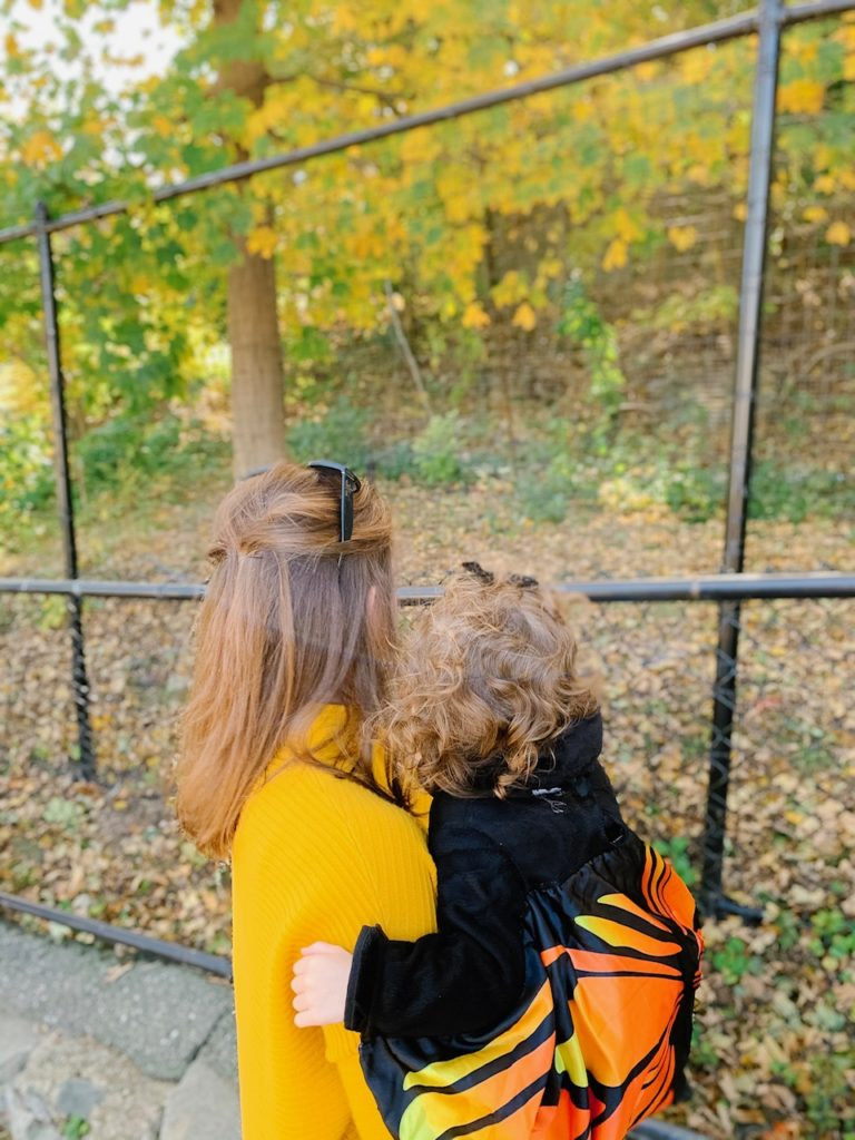 Boston mom blogger Alyssa shares their weekend at Stone Zoo and about saving for college with MEFA and Fidelity