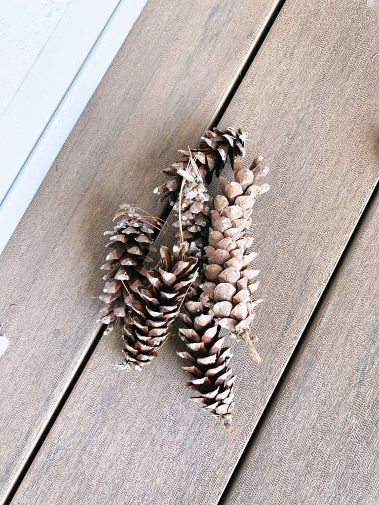 simple pine cone bird feeders for a toddler - and other activities you can do at home!