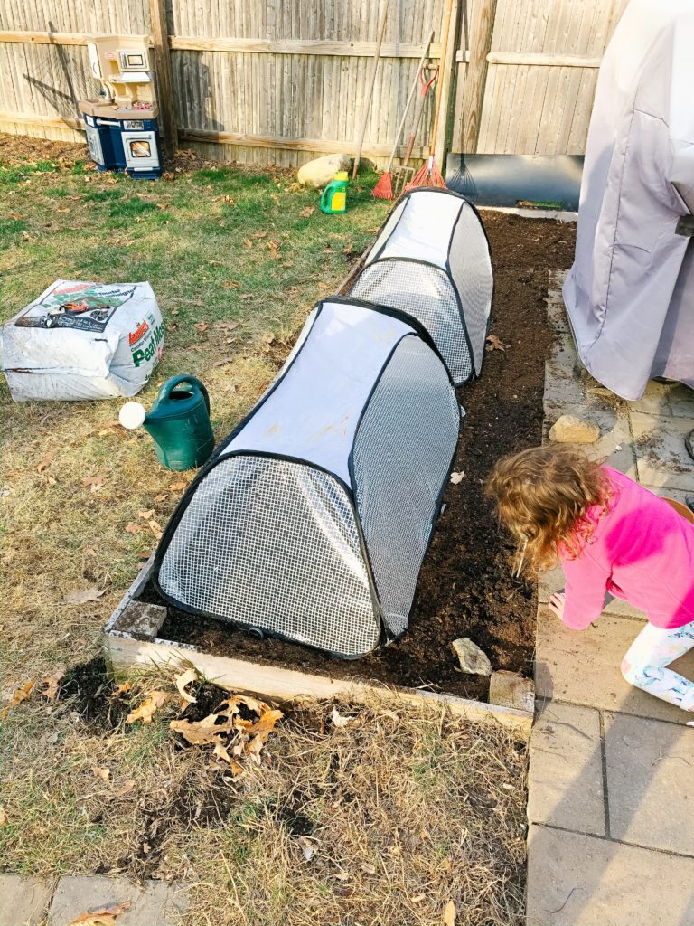 planting a garden with your toddler - and other activities to do at home!