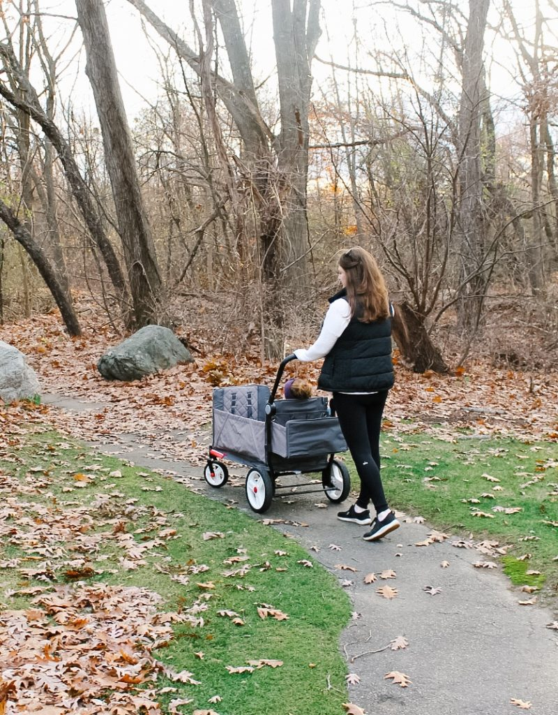 Radio Flyer Stroller Wagon Review